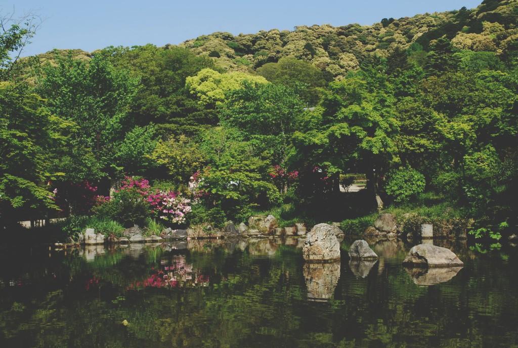 kyoto-maruyama-park
