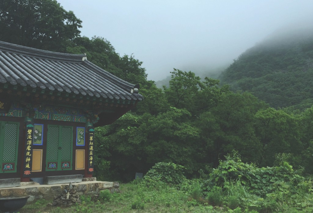 Here's what exactly what happens when you sign-up to experience a Korean monk's life via one of the many temple stay programs offered around the country.