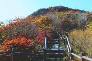 Jirisan Baemsagol Trail, Korea