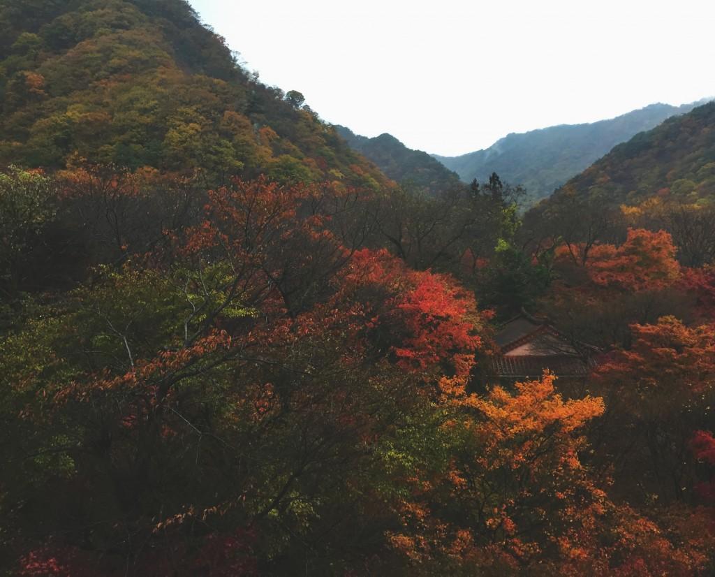 Naejangsan: Beautiful Even When Raining