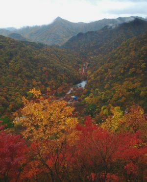 Naejangsan, Korea