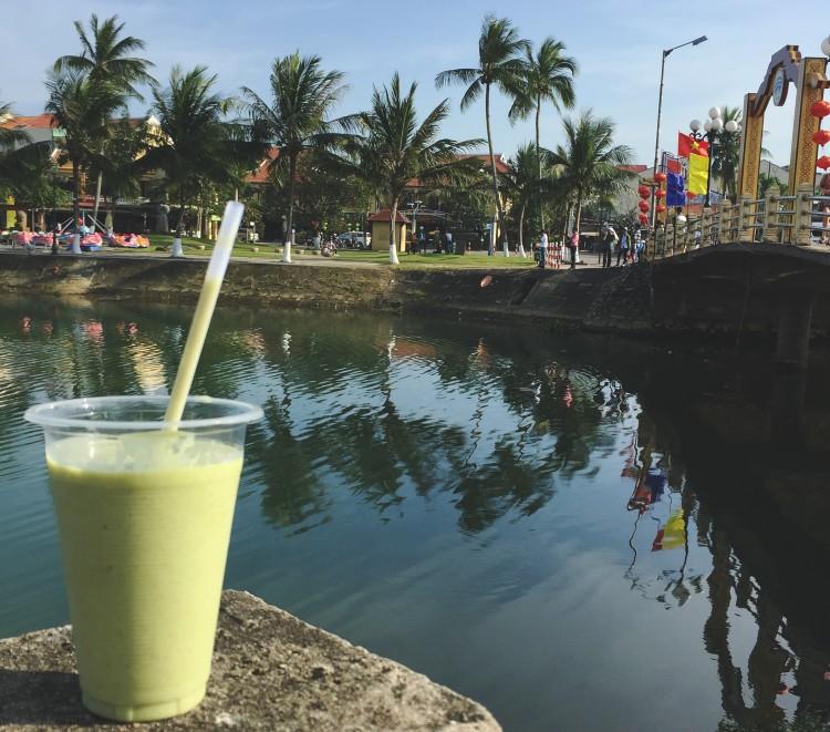 Avocado Smoothie, Sinh To Bo, Vietnamese Drink