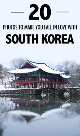 Here are 20 photos to inspire you to visit and fall in love with South Korea!