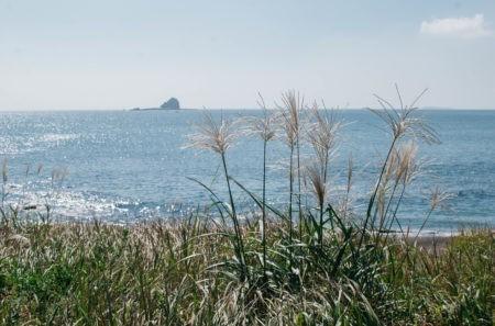 Postcards from Jeju's West Coast
