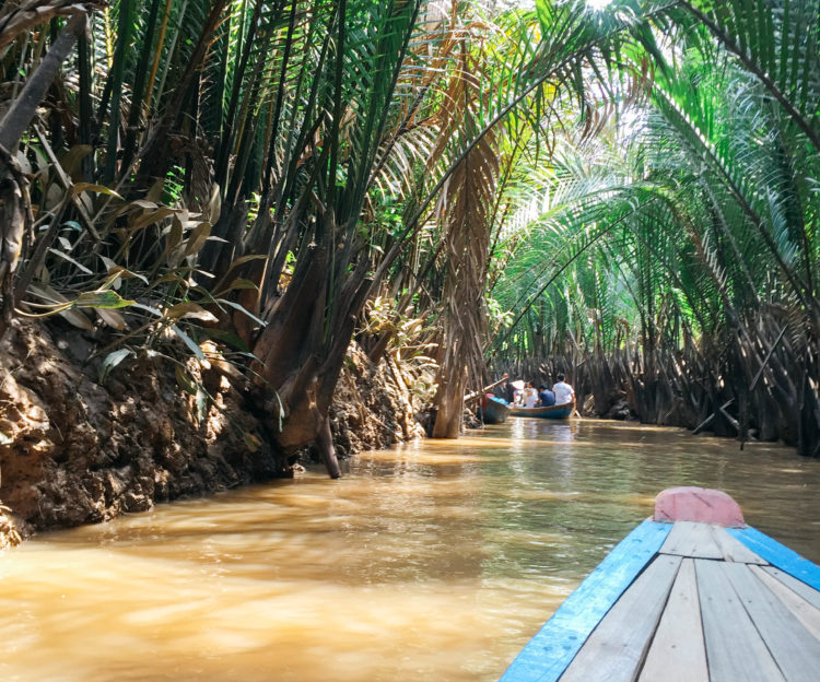 mekong-delta-view