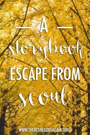 Looking to get out of the city? How fun does this storybook escape from Seoul, Korea look?