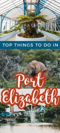 Headed towards the Eastern Cape of South Africa? Here are all the top things to do in Port Elizabeth, the friendly, windy city!