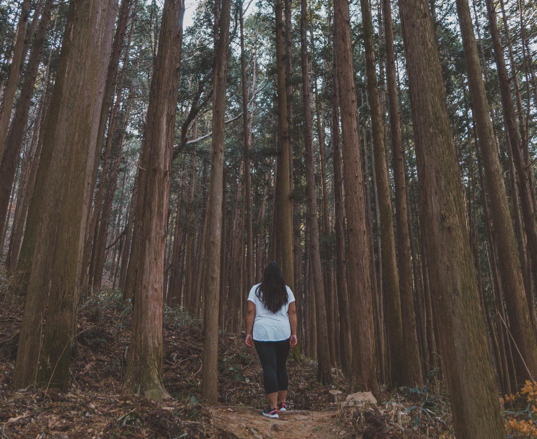 Путешествие в Южную Корею 50 советов по путешествиям в Южную Корею korea hiking travel tips 1440x1177