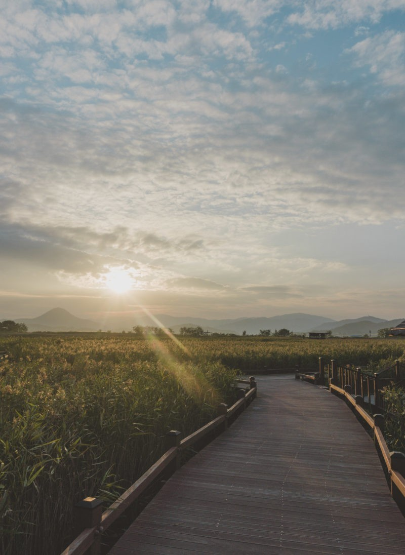 Suncheon Bay, Korea