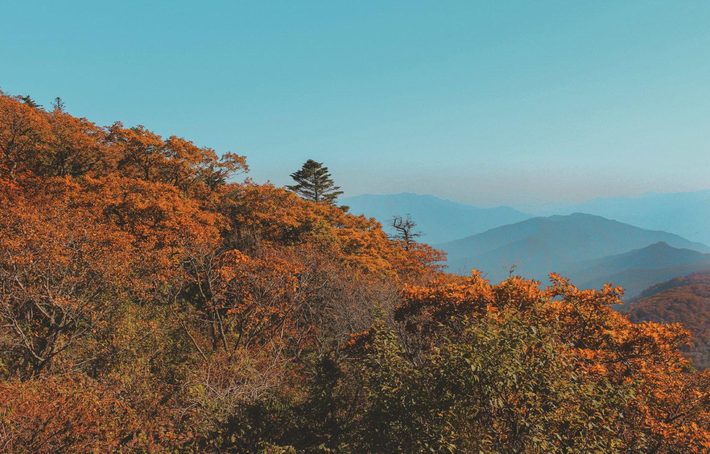 Baemsagol Valley in Jirisan