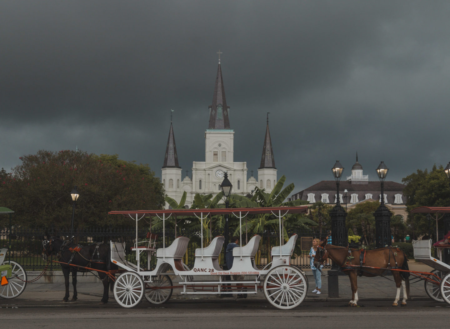 Horse and Carriage in front of Jackson Square, NOLA on a stormy day