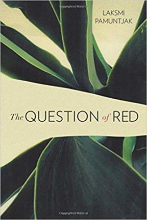 The Question of Red | 2018 Book Challenge