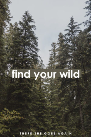 find your wild - travel quote