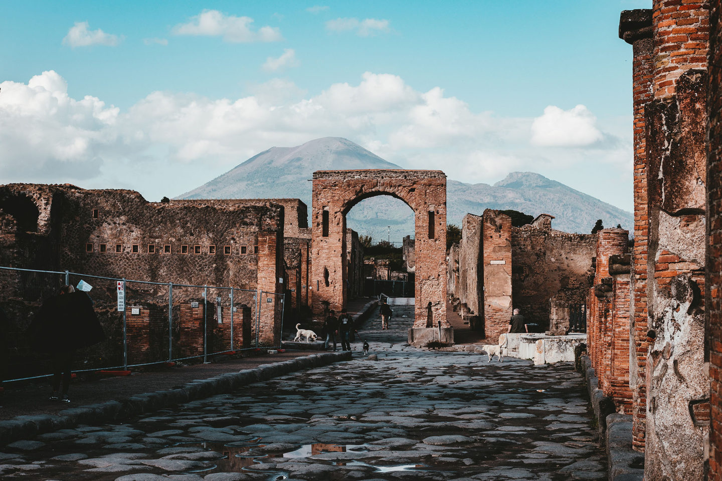 pompeii and mt vesuvius