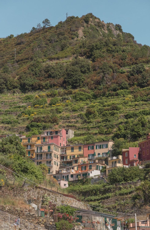 colorful buildings in green hillside