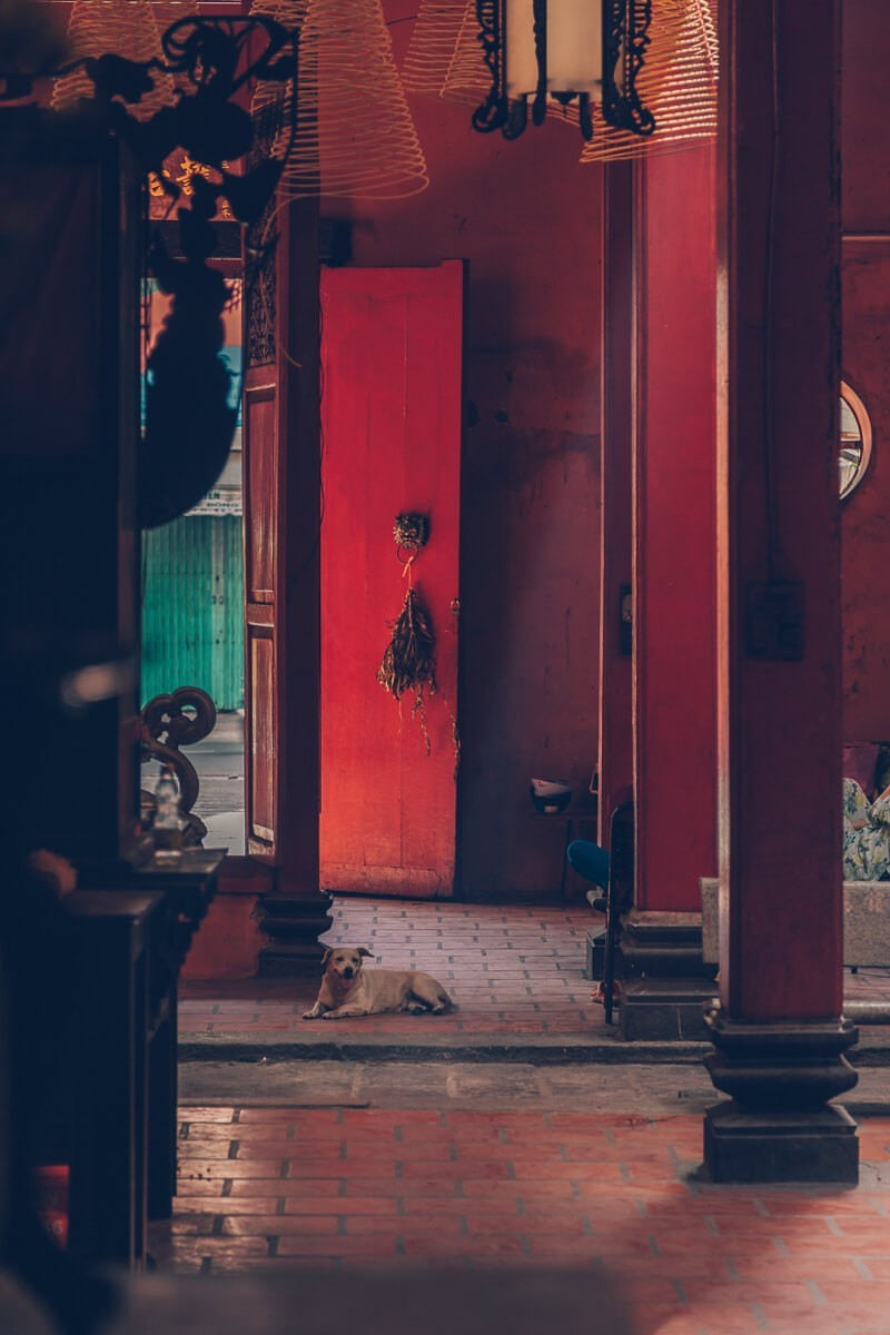 Tam Son Hoi Quan Pagoda, HCMC, Vietnam