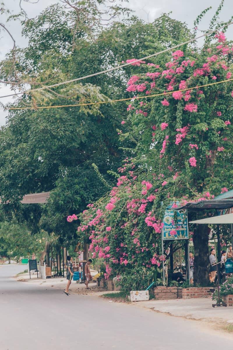 Road near Victory Road Villas, Phong Nha Vietnam