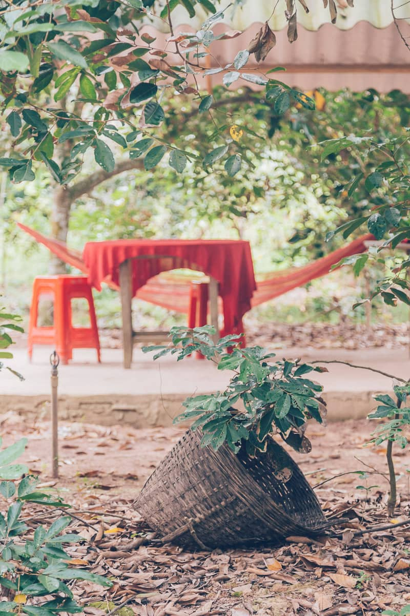 Tu Hien Rambutan Garden, Vinh Long, Vietnam