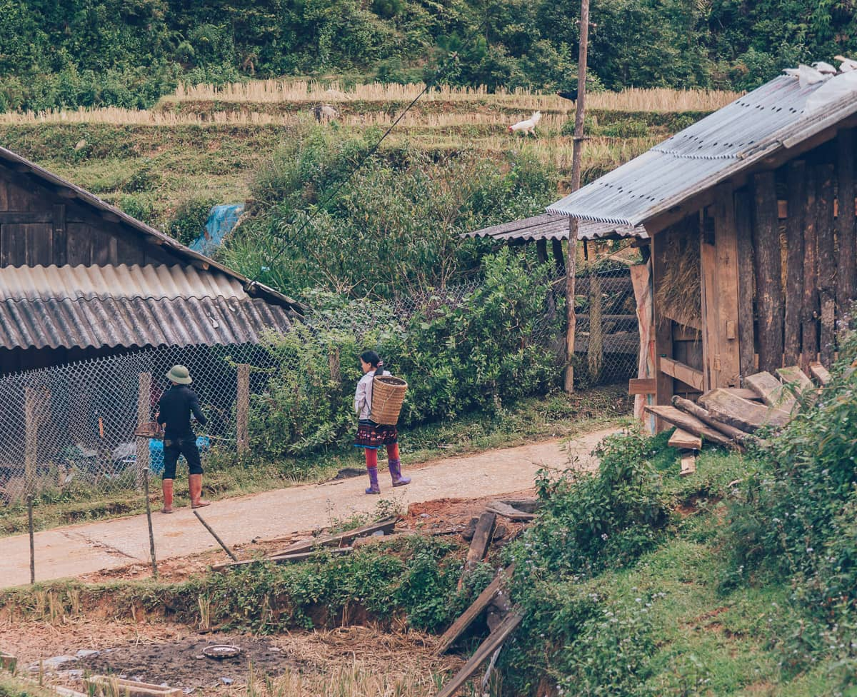 Hmong Minority, Mu Cang Chai, Vietnam