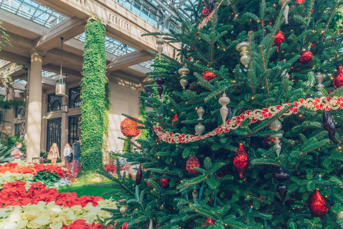 Christmas Shows at Longwood Gardens