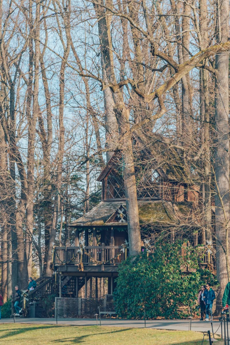 Canopy Cathedral Treehouse, Longwood Gardens, Pennsylvania