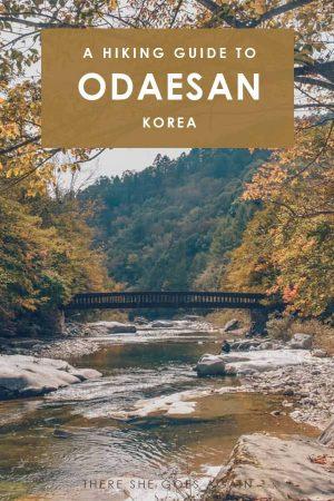 A complete guide to hiking Odaesan in Korea | korea hiking, korea travel