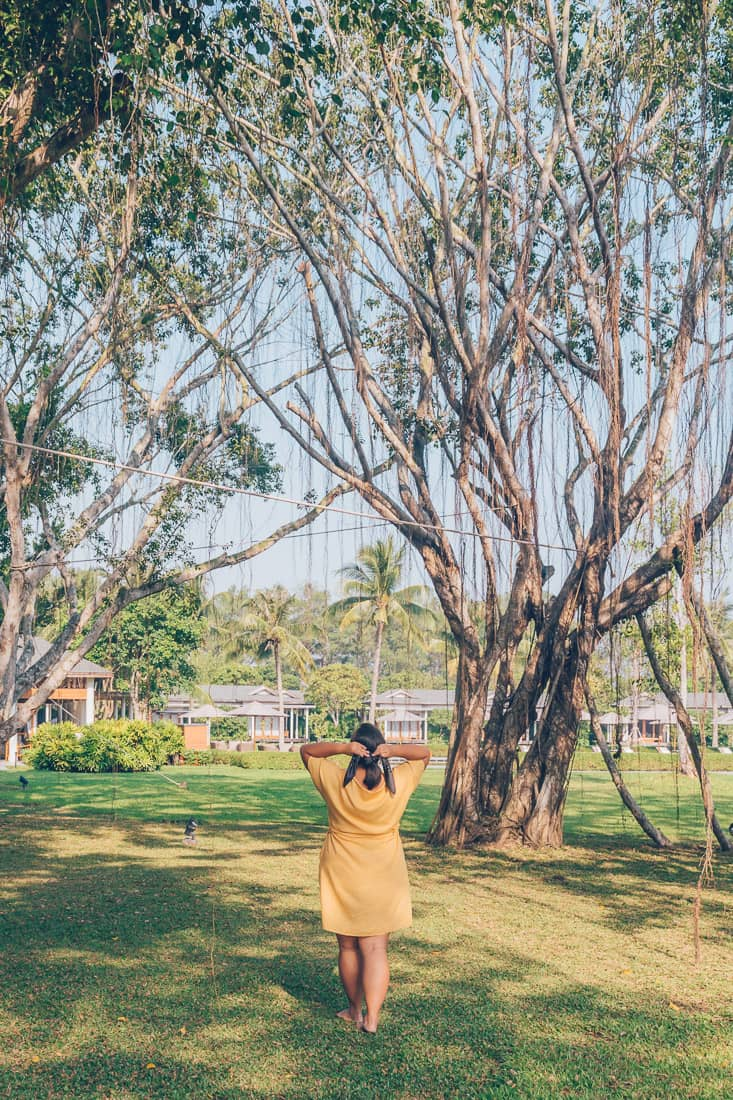 Azerai Can Tho banyan trees