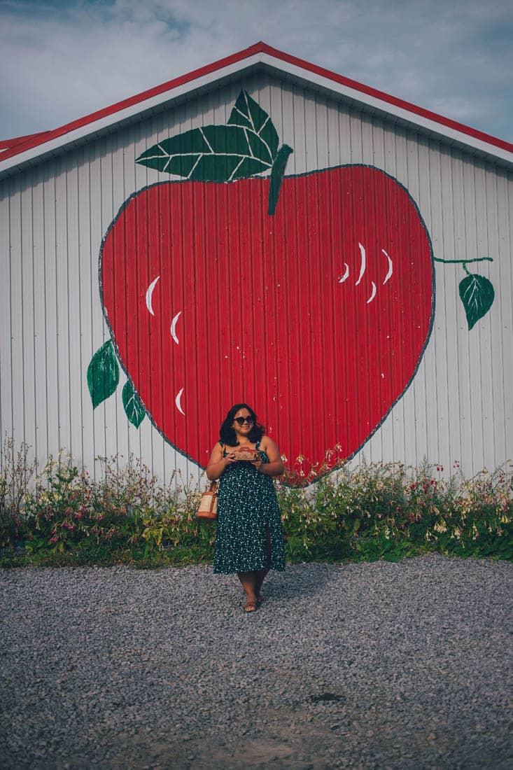 Ferme Laval Gagnon strawberries, Ile d'Orleans, Quebec City, Canada
